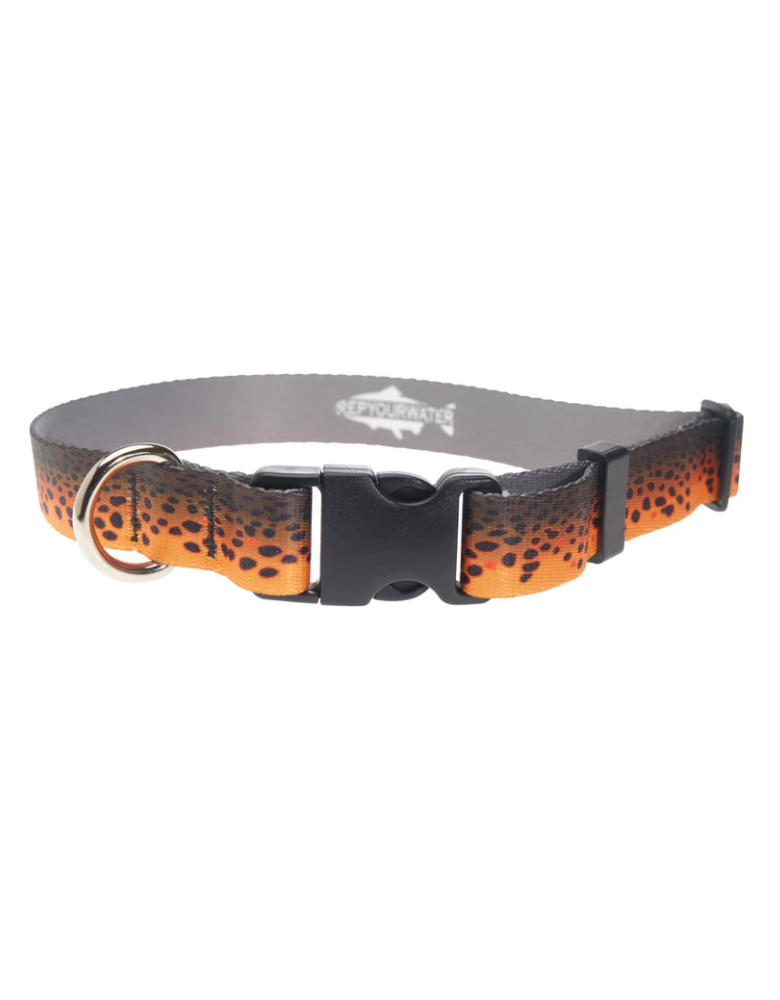 Rep Your Water Dog Collar